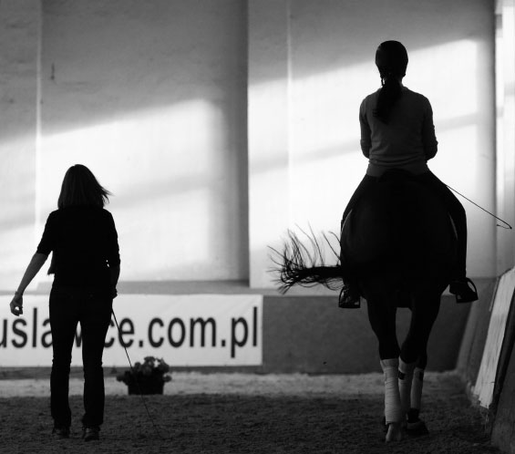 Queenswood Stables Riding Lessons